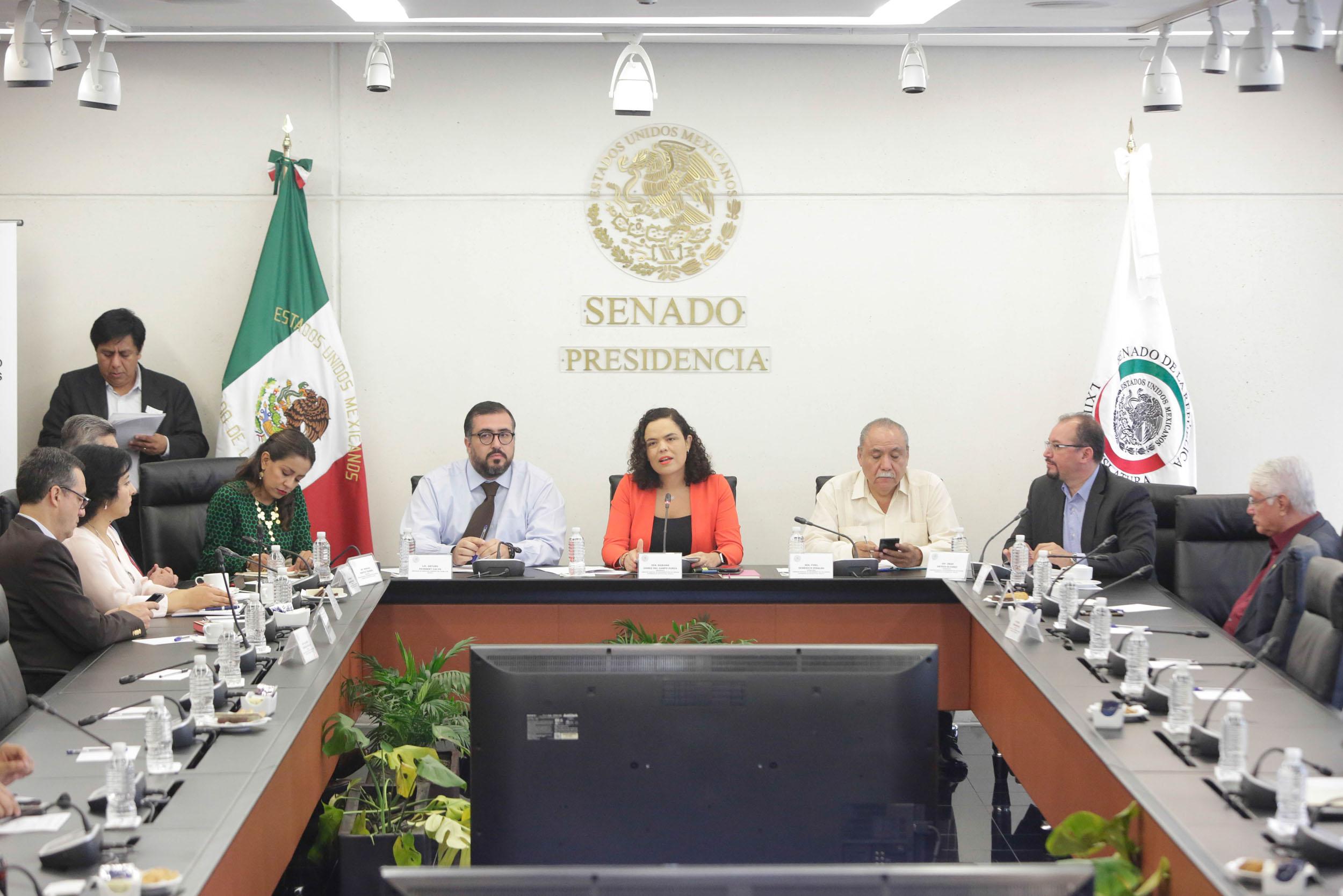 """Confirma presidenta de Comisión de Seguimiento a Nochixtlán """"graves violaciones a derechos humanos"""" en Oaxaca"""
